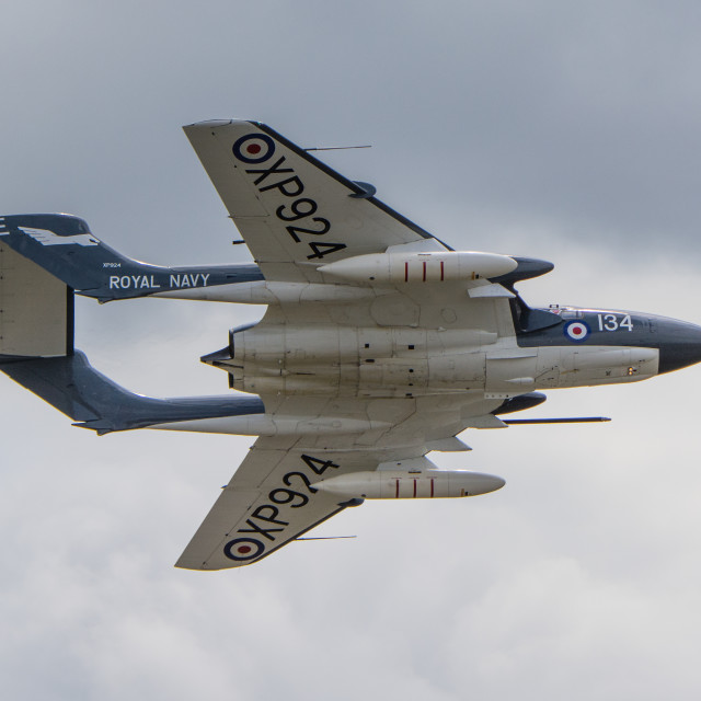 """De havilland Sea Vixen"" stock image"