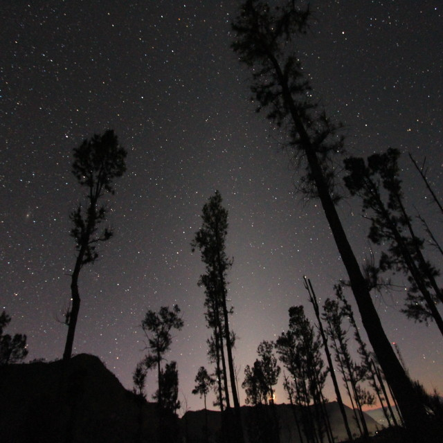 """""""standing under a million stars in the sky"""" stock image"""