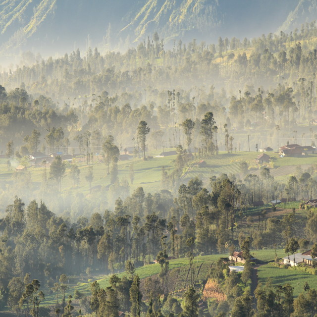 """misty village as the sun rises"" stock image"