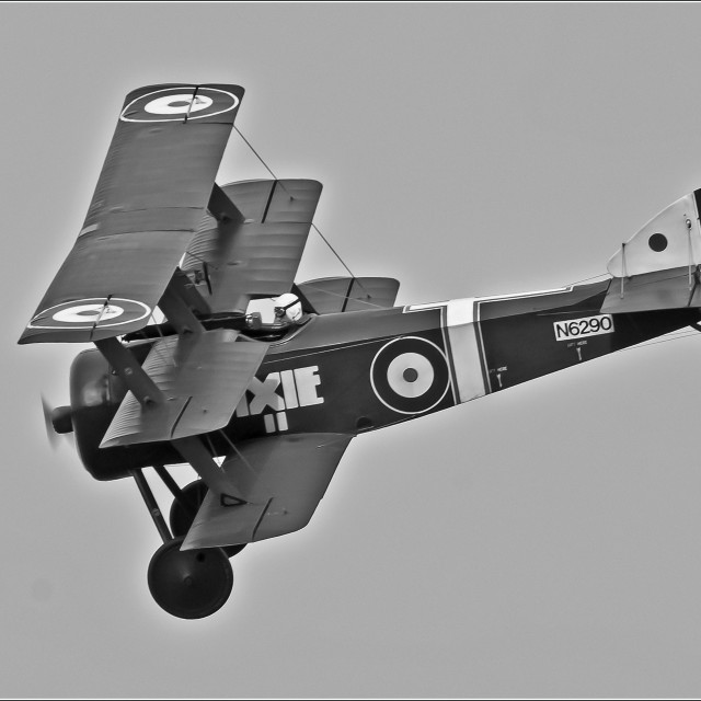 """Sopwith Triplane 1916 (Monochrome)"" stock image"