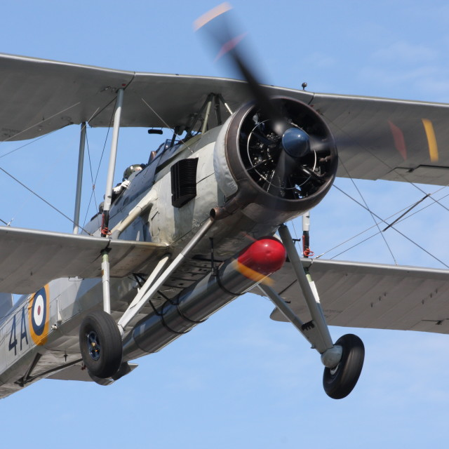 """Fairey Swordfish"" stock image"