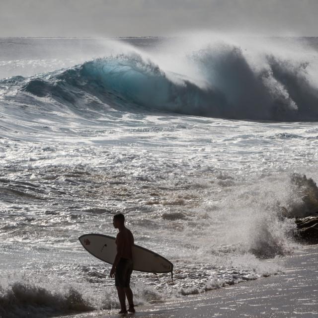 """Hawaii Surfer"" stock image"