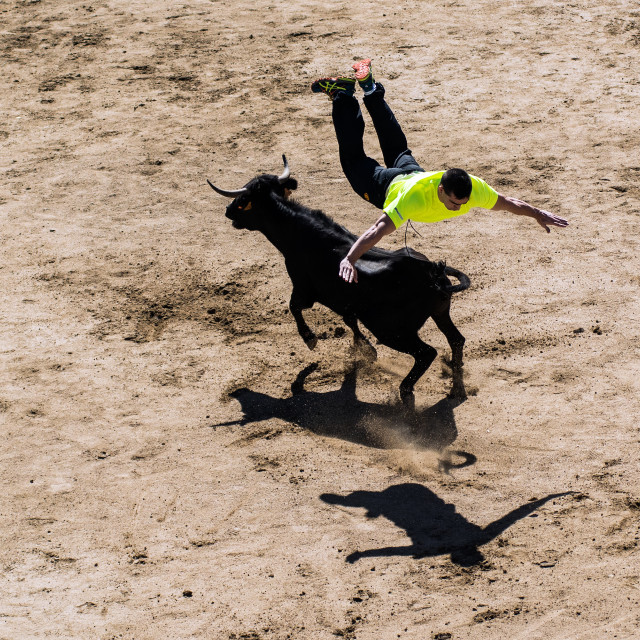 """Jumping over a bull"" stock image"