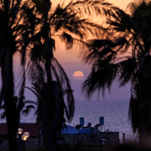"""""""Sunset in Tel Aviv, Israel"""" stock image"""