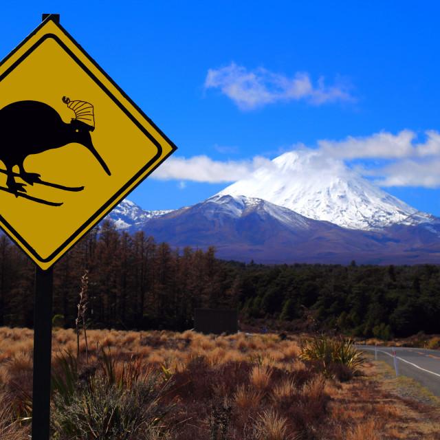 """""""Kiwi Skiing Sign New Zealand"""" stock image"""