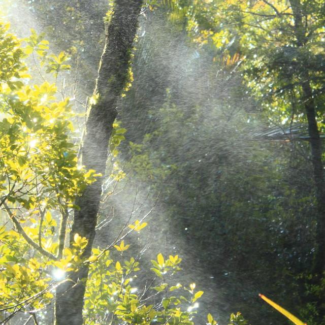 """Waterfall Mist with sunshine"" stock image"