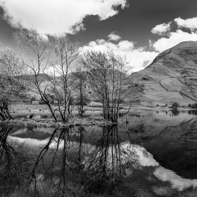 """Reflection in Brotherswater"" stock image"