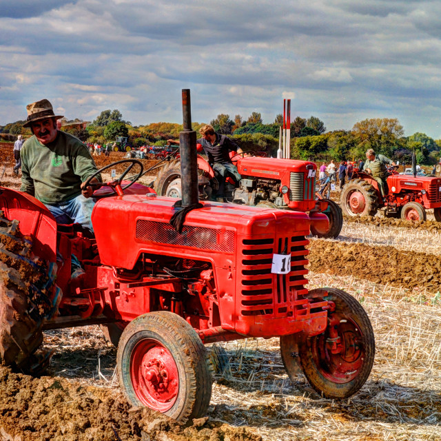 """""""Red tractors"""" stock image"""