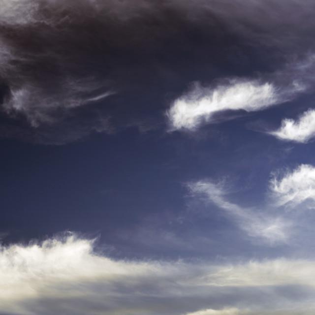 """""""Cumulus Cloudscape"""" stock image"""