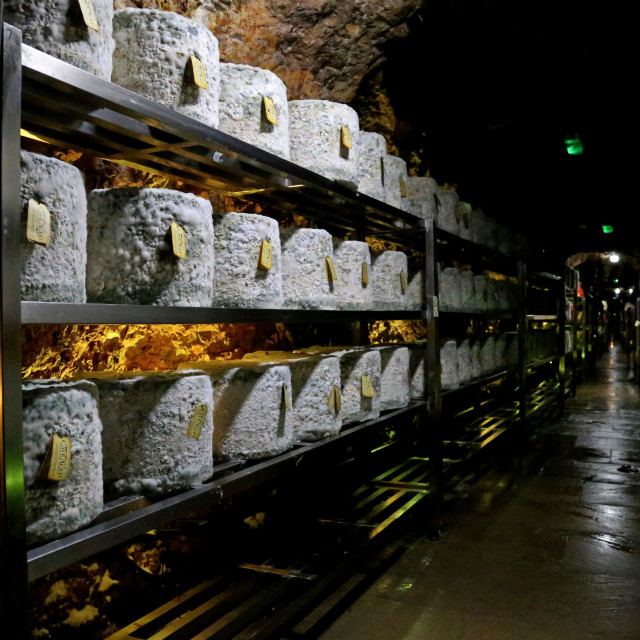 """Cave Aged Cheddar Cheese at Wookey Hole"" stock image"