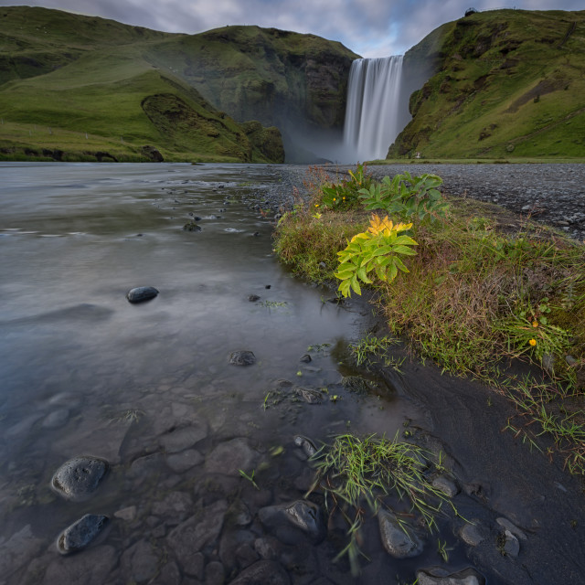 """Skogafoss waterfal"" stock image"