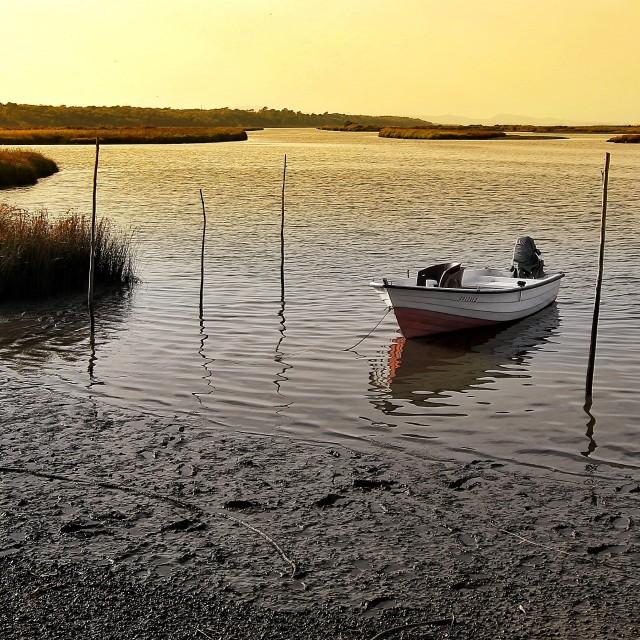 """Boat"" stock image"