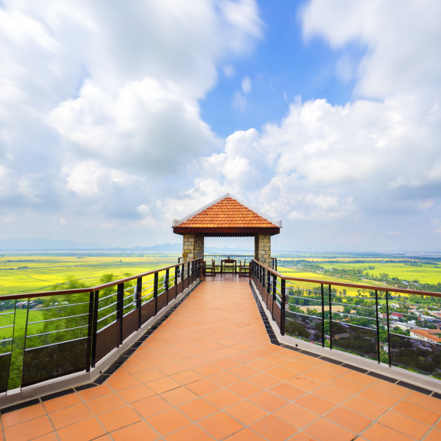"""""""Viewing rice field from above"""" stock image"""