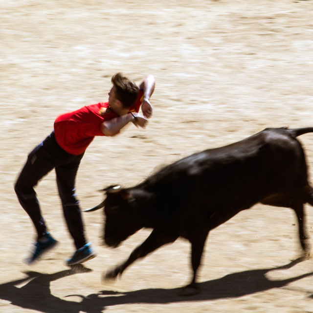 """Escaping from the bull"" stock image"