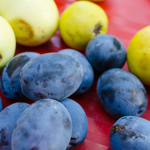 """""""Summer Fruits and Colours"""" stock image"""
