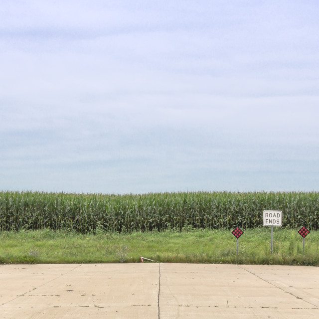 """Road to Corn"" stock image"
