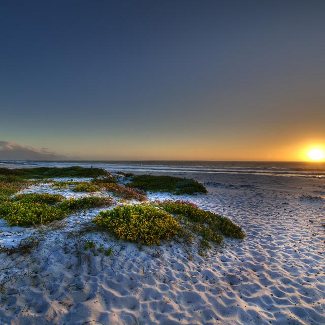 """""""Spring Beach"""" stock image"""