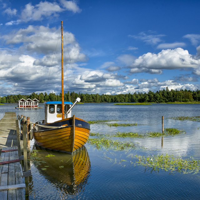 """Swedish Landscape"" stock image"