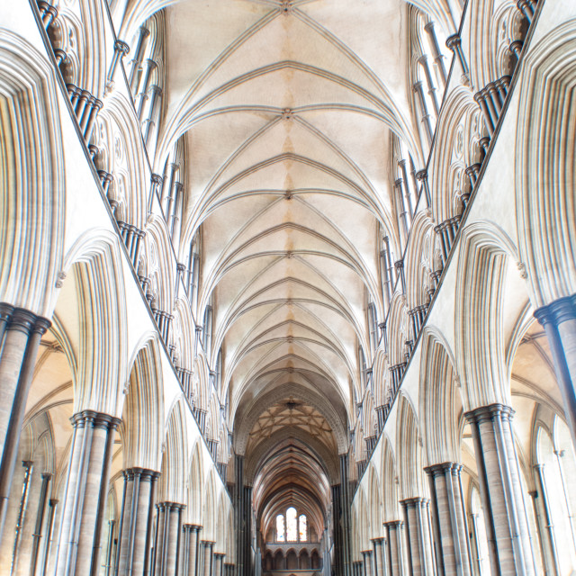 """""""Salisbury Cathedral Nave"""" stock image"""