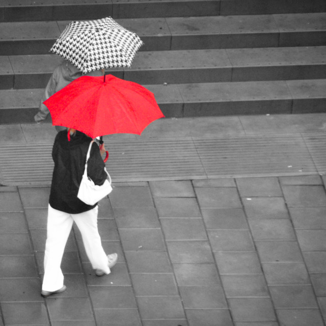 """Brollies in the rain"" stock image"