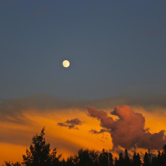 """Full Moon in Colorado"" stock image"