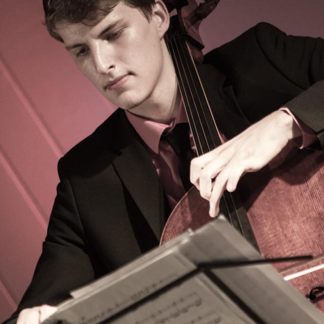 """Cello Player"" stock image"