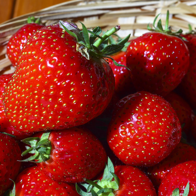 """Strawberries in a basket"" stock image"