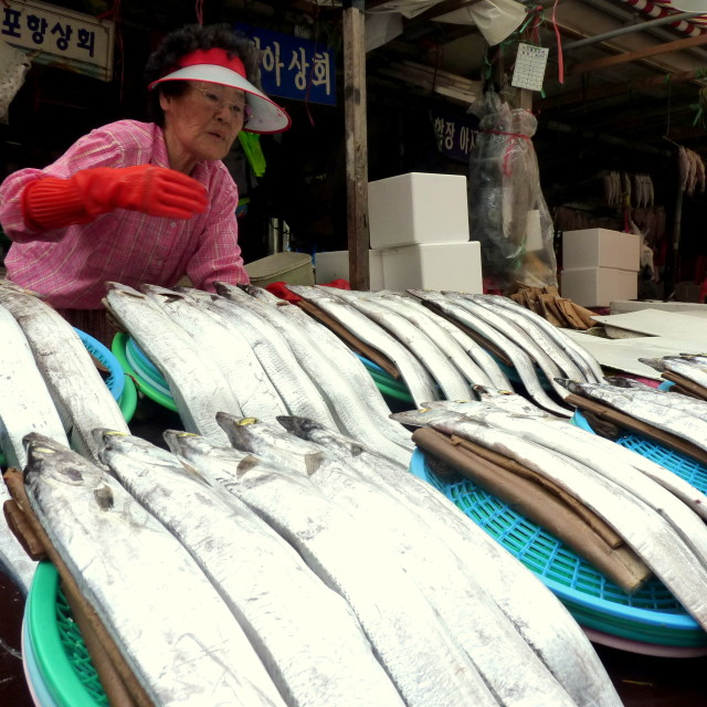 """Korean woman at the fish market"" stock image"