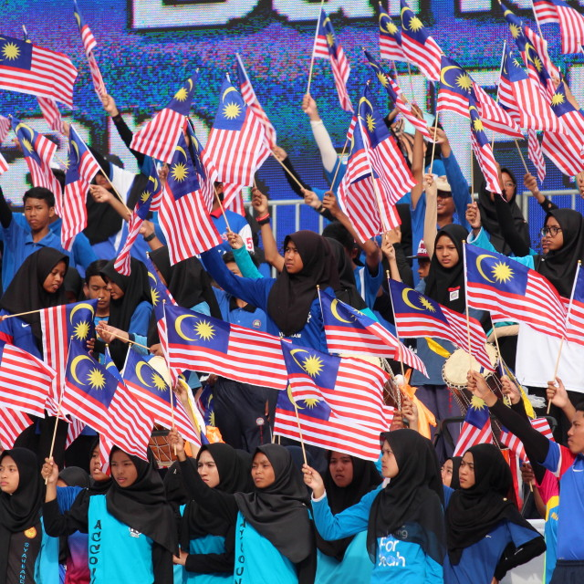 """Group of kids waving the malaysian flag i"" stock image"