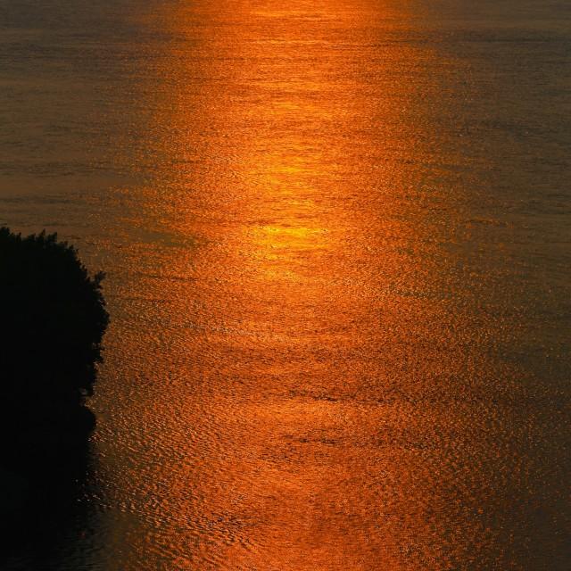 """""""Morning Glow"""" stock image"""