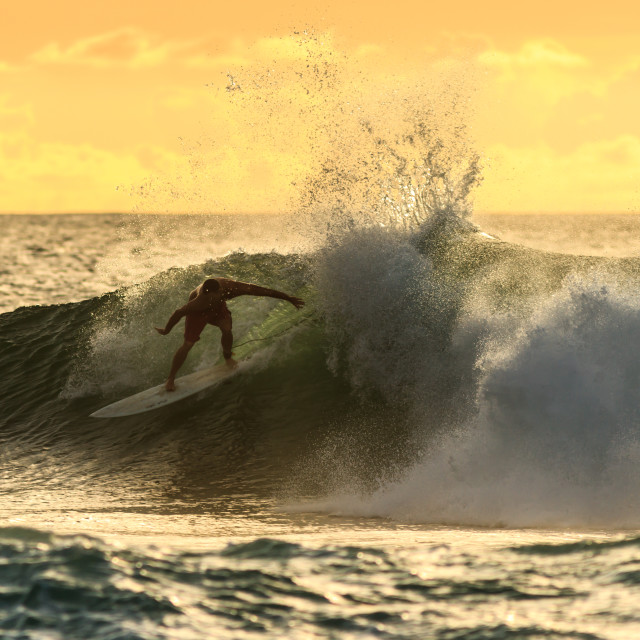 """""""Surfing during the sunset in Hawaii"""" stock image"""