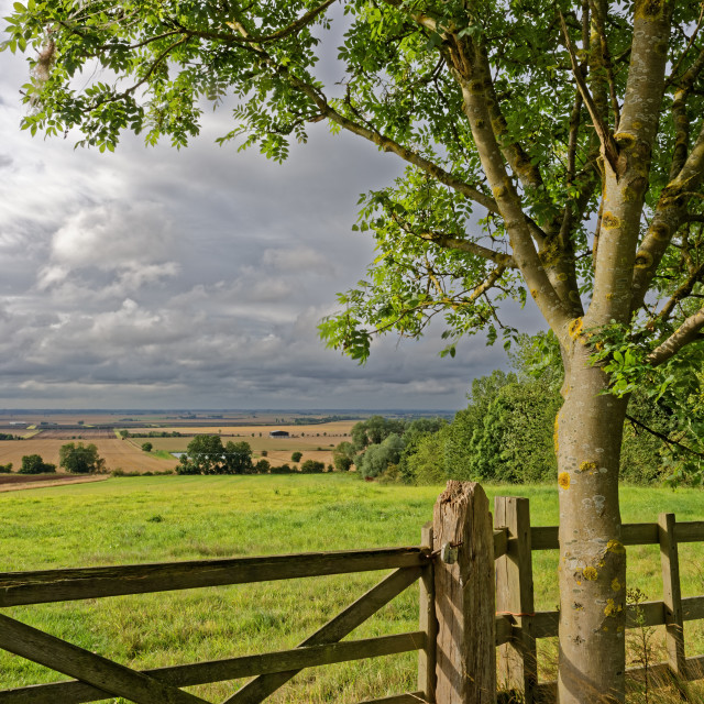 """Lincolnshire Fens,UK"" stock image"