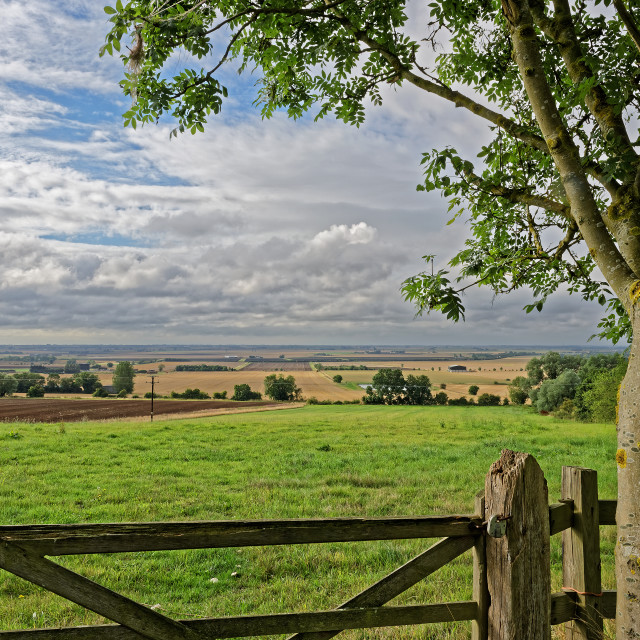 """""""Lincolnshire Fens,UK"""" stock image"""