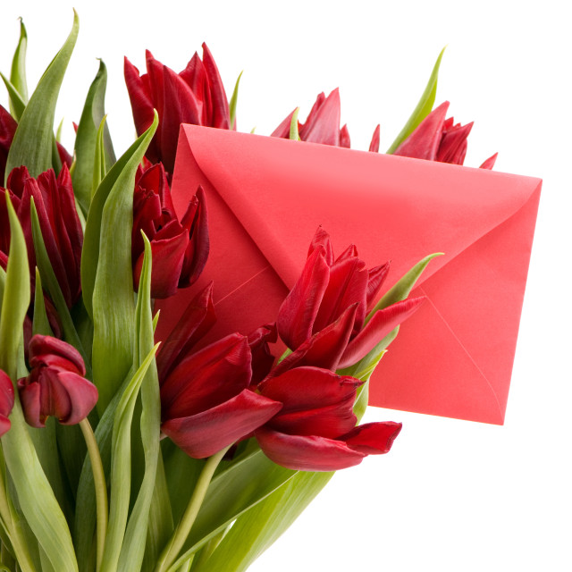 """""""red tulips and red envelope"""" stock image"""