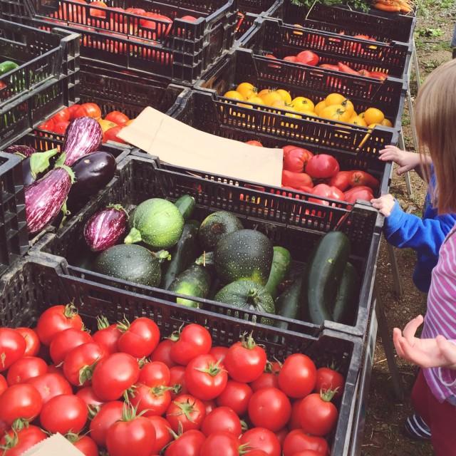"""Farm Market Vegetables, Brittany, France"" stock image"