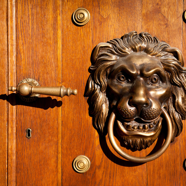 """Lion casting knock door decoration"" stock image"