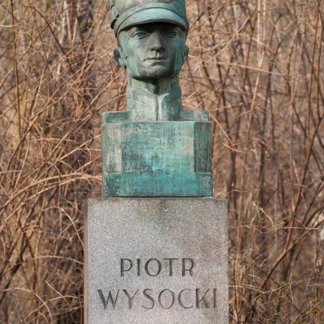 """Bush behind Piotr Wysocki bust"" stock image"