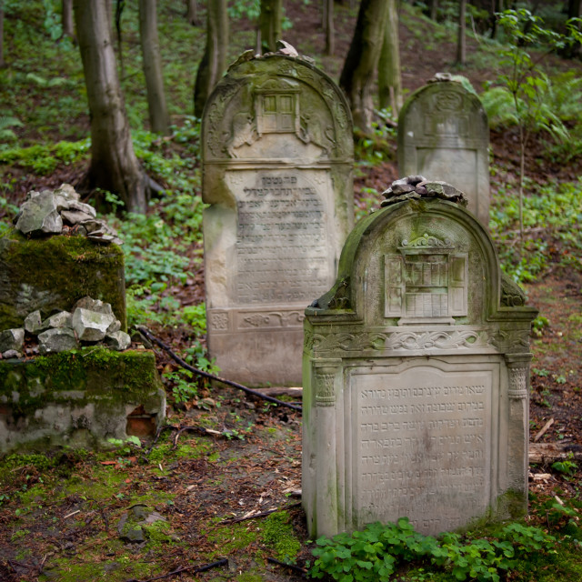 """""""Jewish Cemetery in forest"""" stock image"""