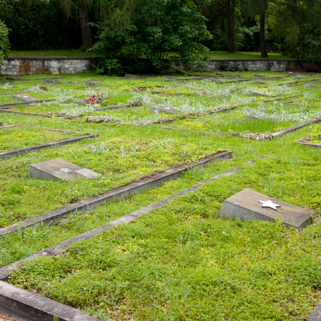"""Russian War Cemetery graves"" stock image"