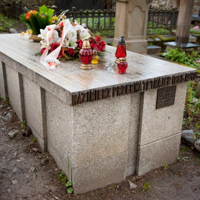 """""""Kazimierz Przerwa Tetmajer grave"""" stock image"""