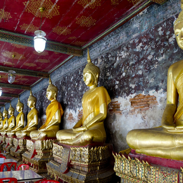 """""""Row of golden Buddha statues"""" stock image"""
