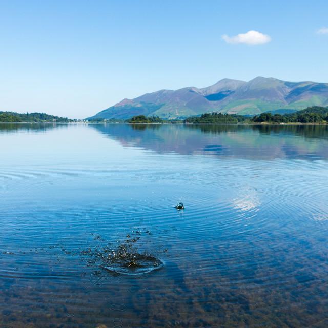 """Derwentwater Lake District calm water"" stock image"