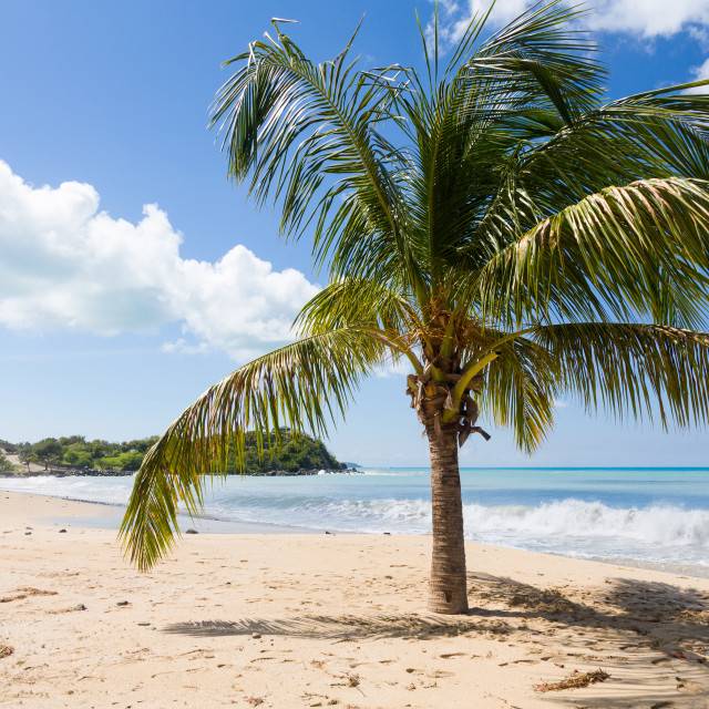 """Friar's bay on St Martin in Caribbean"" stock image"