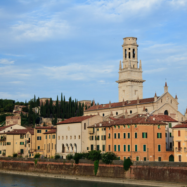 """""""View over the rooftops of Verona, Italy with Cathedral"""" stock image"""