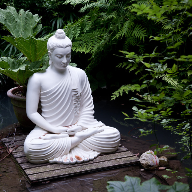 """""""Buddha statue in pond"""" stock image"""