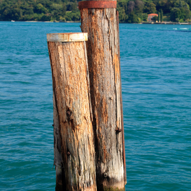 """""""Wood piles in Lake Garda"""" stock image"""