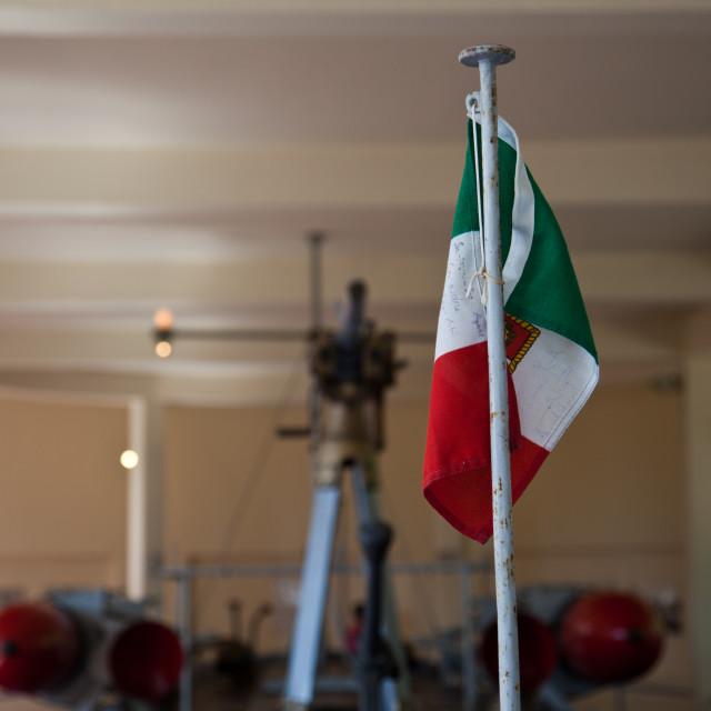 """""""Italian Flag on gunboat"""" stock image"""