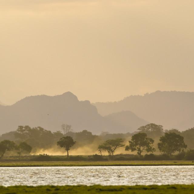 """""""Sunrise in Arugam bay lagoo, Sri Lanka"""" stock image"""