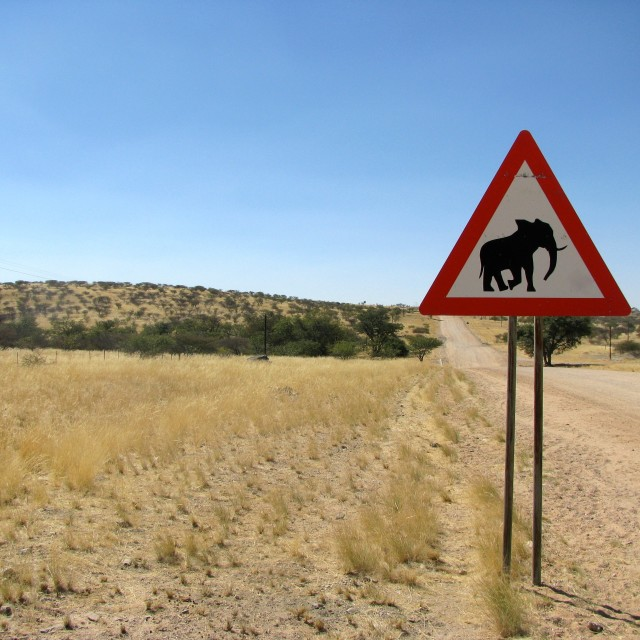 """Namibia Road sign elphant"" stock image"