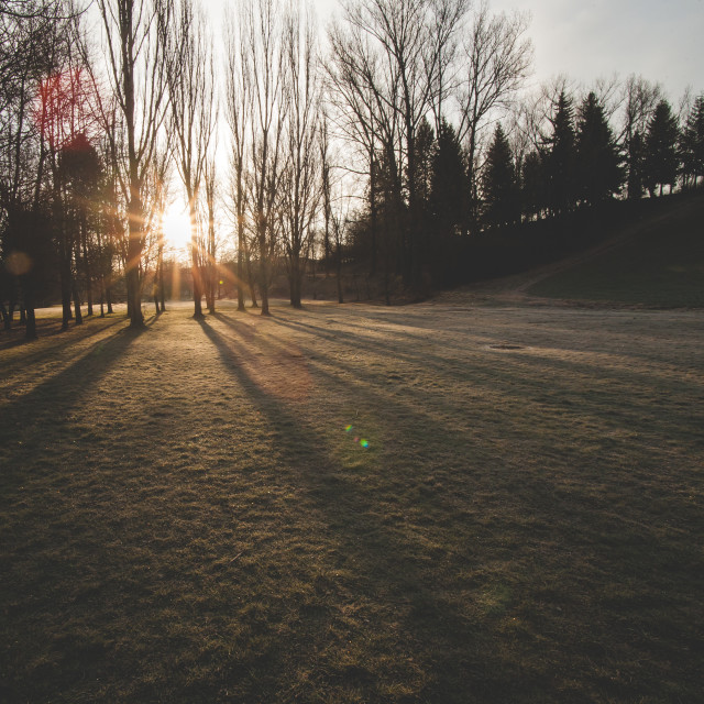 """""""Sunrise in the park"""" stock image"""